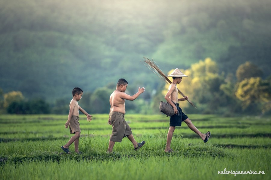 Весенние праздники Вьетнама