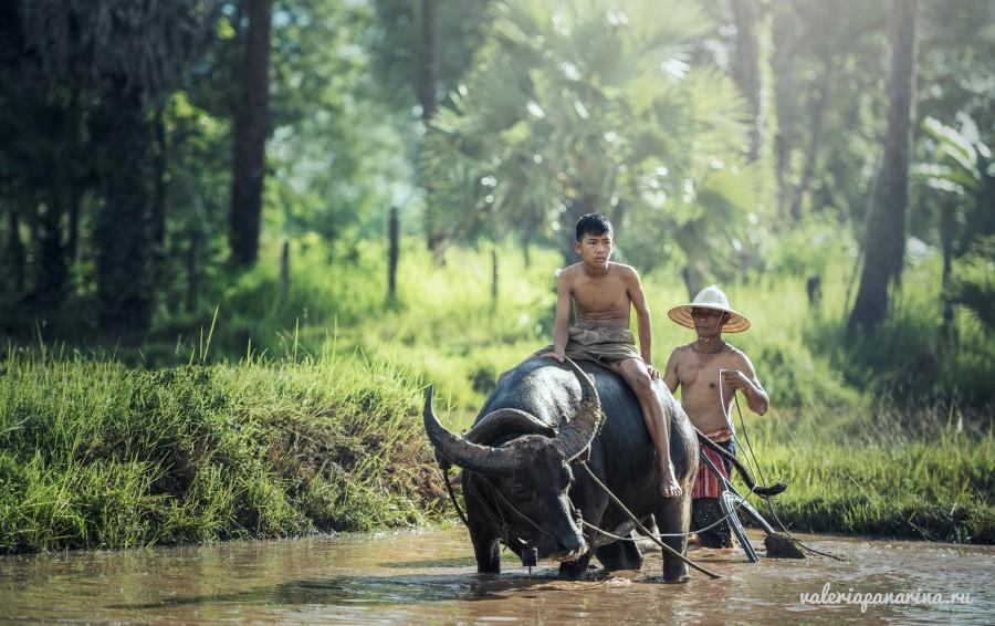 Райские уголки Вьетнама
