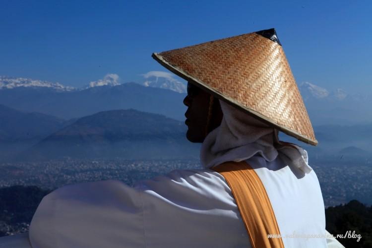 Слуги Будды: как живут вьетнамские монахи Почему оранжевый?